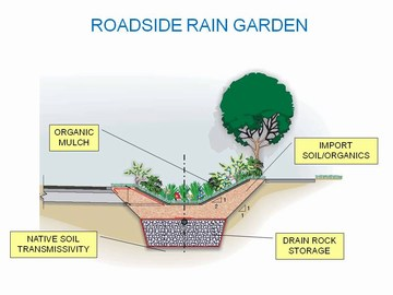 Sustainable Practices For Landscape Design Rain Gardens
