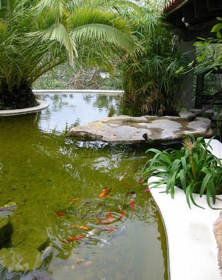 Sustainable Practices For Landscape Design Natural Pools