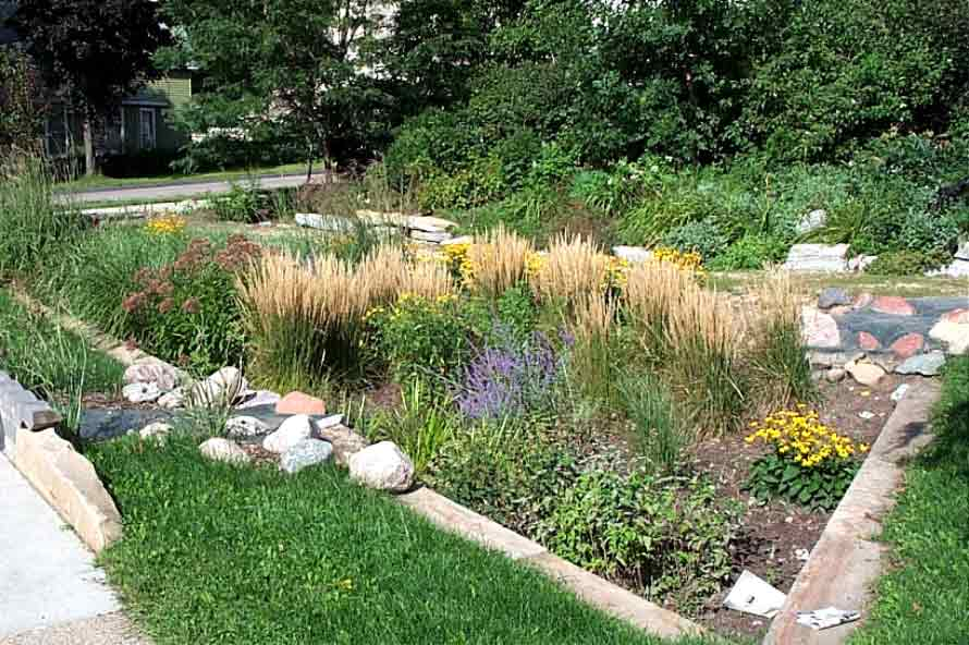 Rain garden design examples home ideas modern home design for Garden design examples
